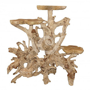 Teak Root Display C