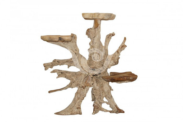 Teak Root Display B