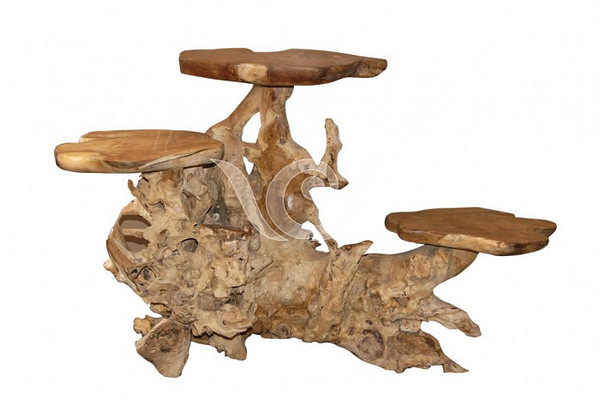 Teak Root Display D